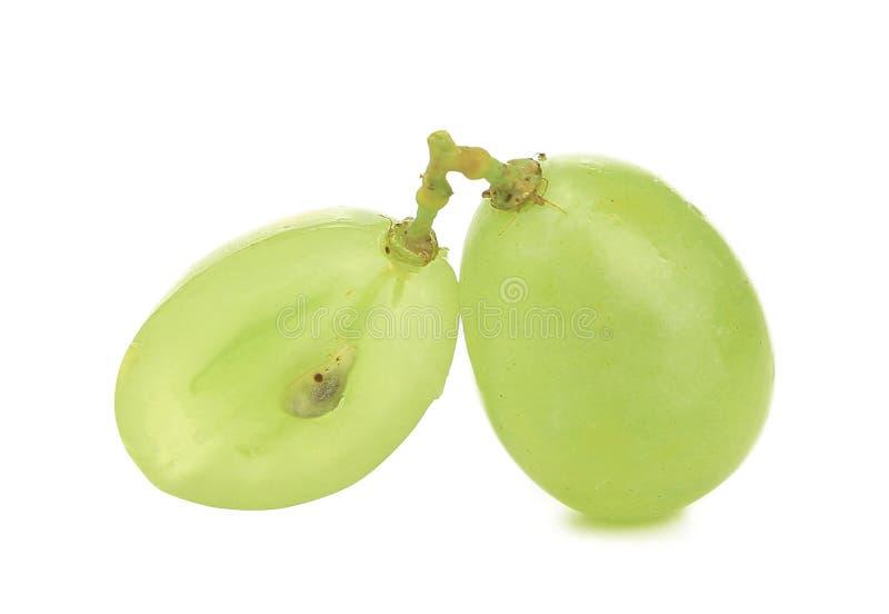 Sluit omhoog van groene rijpe druiven. stock afbeelding