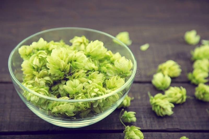 Sluit omhoog van groene rijpe hopkegels in een glaskom over donkere rustieke houten achtergrond Het ingrediënt van de bierproduct stock fotografie