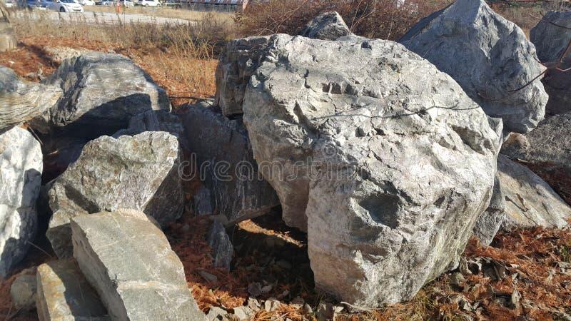 Sluit omhoog van Grote die stenen of rots binnen - tussen groene boom worden geregeld stock foto