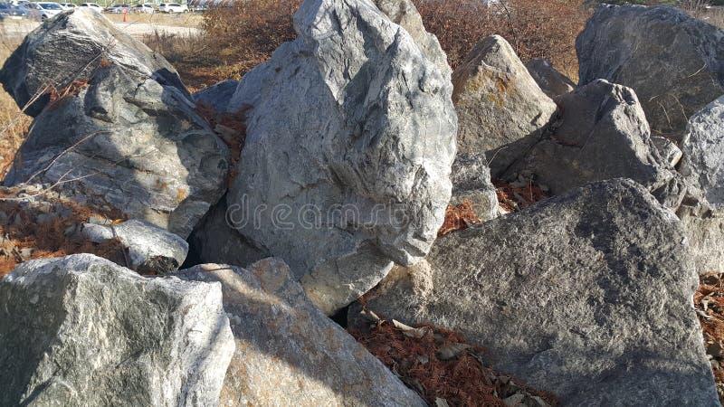 Sluit omhoog van Grote die stenen of rots binnen - tussen groene boom worden geregeld stock fotografie