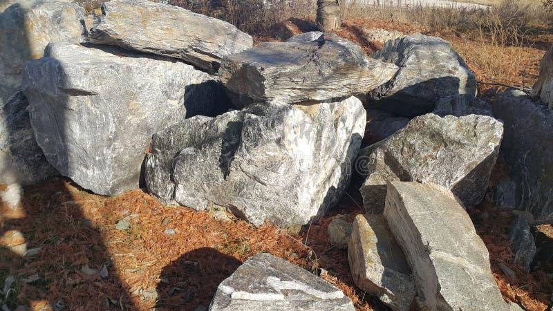 Sluit omhoog van Grote die stenen of rots binnen - tussen groene boom worden geregeld royalty-vrije stock foto