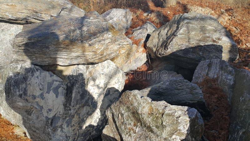 Sluit omhoog van Grote die stenen of rots binnen - tussen groene boom worden geregeld royalty-vrije stock fotografie