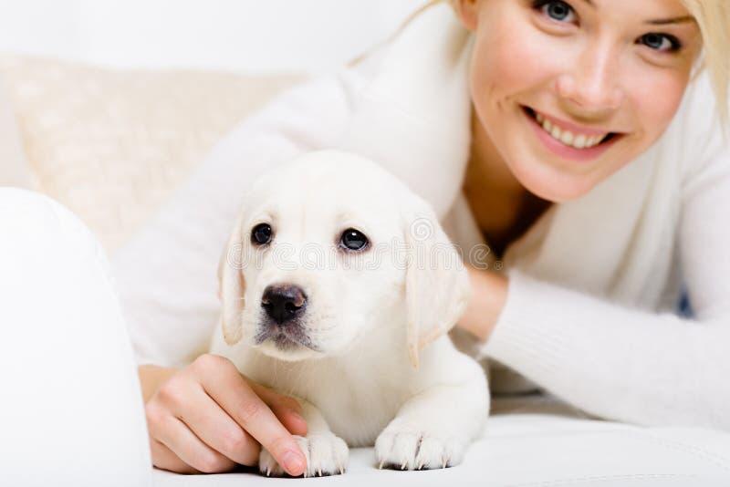 Sluit omhoog van het puppy van Labrador liggend op de bank stock foto