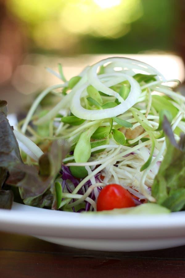 Sluit omhoog van het recept van de verse groentensalade stock fotografie