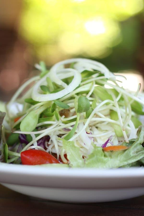 Sluit omhoog van het recept van de verse groentensalade met groene bokeh backg stock foto