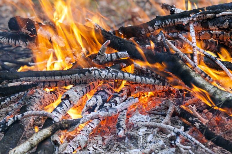 Sluit omhoog van hete brandende brand houten steenkool royalty-vrije stock foto