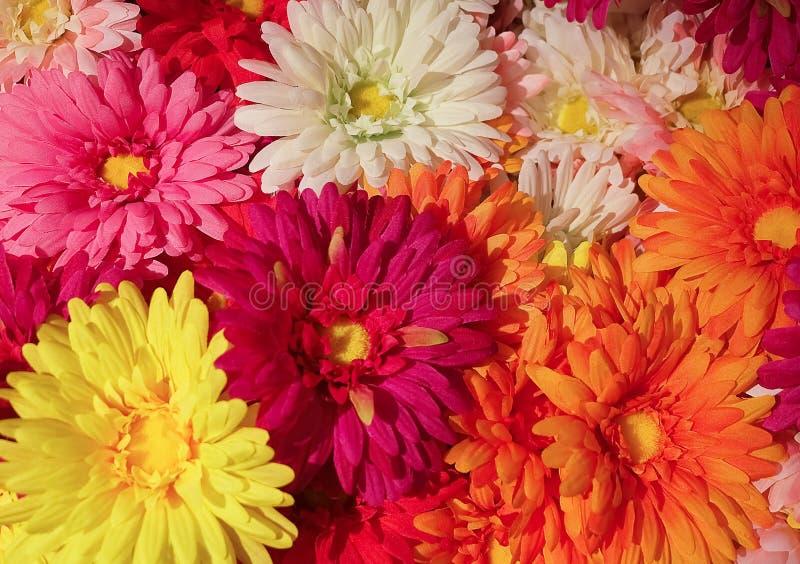 Sluit omhoog van Kleurrijke Kunstmatige Daisy Flowers royalty-vrije stock foto