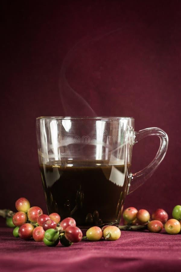 Sluit omhoog van koffie en verse ruwe koffiebonen stock afbeelding