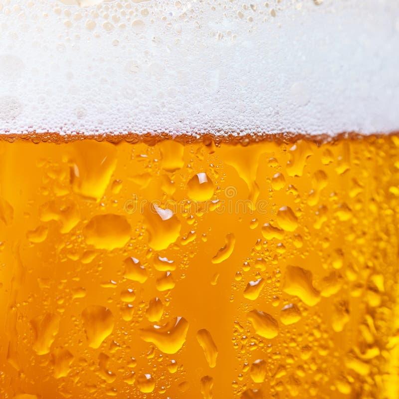 Sluit omhoog van koud bier in een glas stock foto's