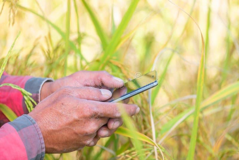 Sluit omhoog van Landbouwershand gebruikend mobiele telefoon of tablet die zich binnen bevinden royalty-vrije stock foto's