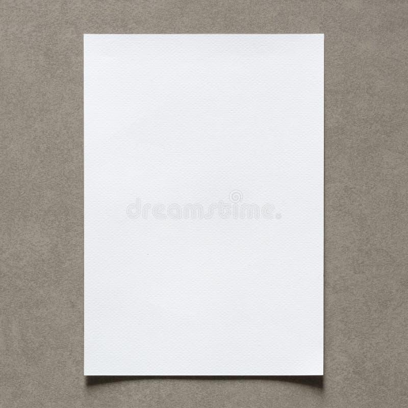 Sluit omhoog van leeg Witboekblad met schaduw op uitstekende muur stock afbeelding