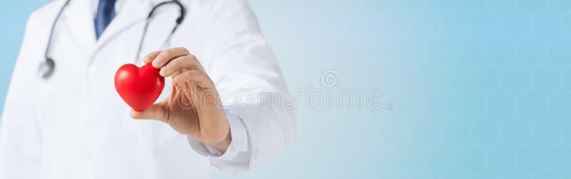 Sluit omhoog van mannelijke artsenhand houdend rood hart stock foto