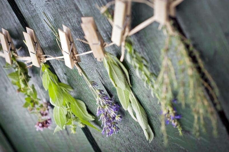 Sluit omhoog van Mediterrane kruidenboeketten, salie, basilicum, lavendel, thyme bij het rustieke groene houten lijst hangen als  stock afbeeldingen