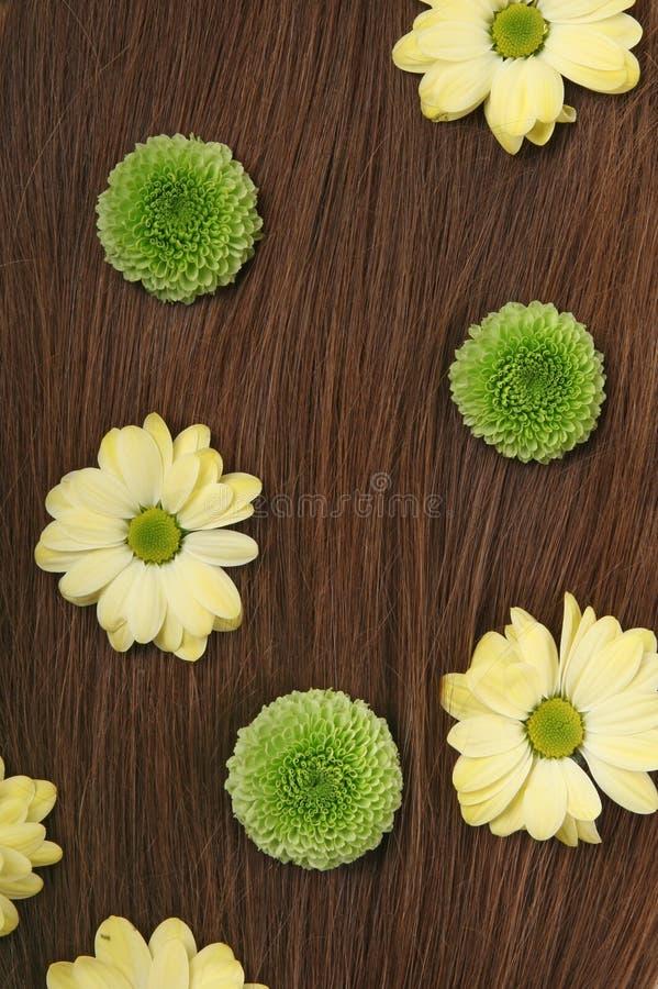 Sluit omhoog van mooi donkerbruin haar met bloemen royalty-vrije stock foto's