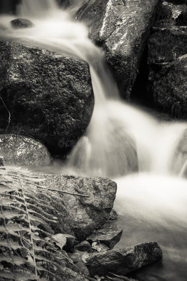 Sluit omhoog van mooie zijdeachtige zachte rivierwatervallen die in het bos van het de herfstlandschap met dode bladeren in zwart stock afbeelding