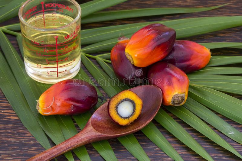 Sluit omhoog van Palmolievruchten met tafelolie en palmblad op een houten achtergrond stock foto