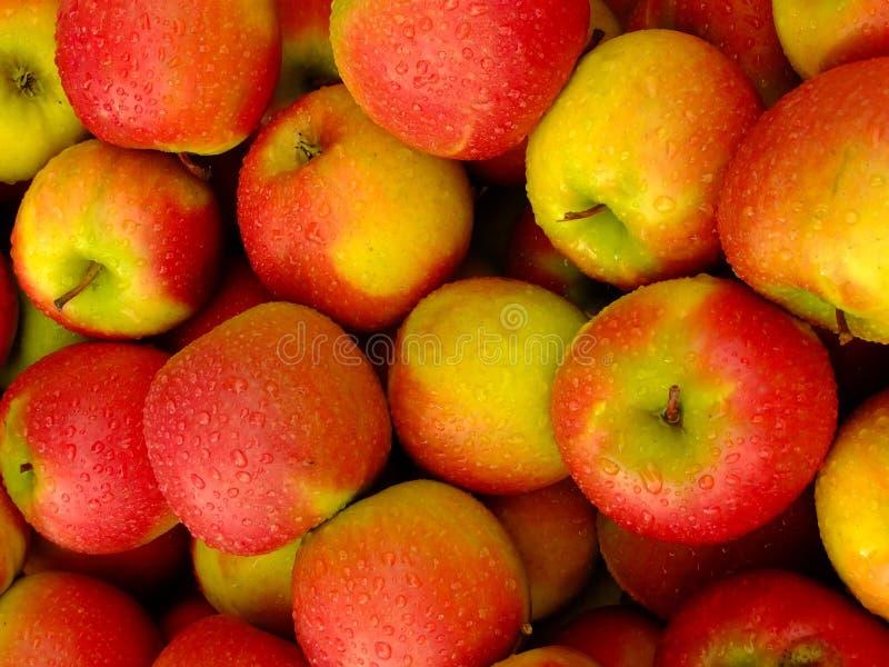 Sluit omhoog van rode appelen royalty-vrije stock foto's