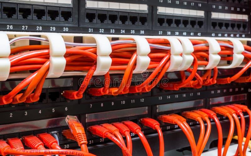 Sluit omhoog van rode die netwerkkabels met schakelaar worden verbonden stock foto