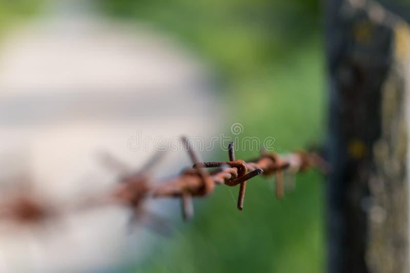 Sluit omhoog van roestprikkeldraad met vage achtergrond stock foto