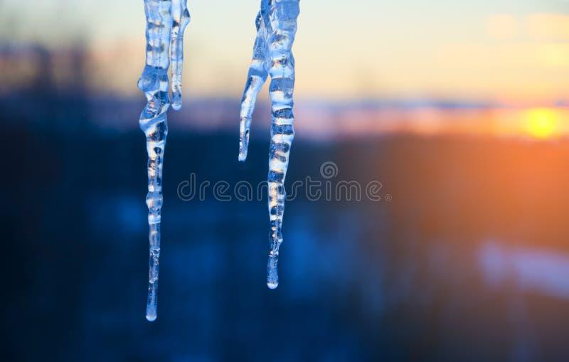 Sluit omhoog van twee ijskegels op een kleurrijke achtergrond van de hemel van de zonsondergangwinter royalty-vrije stock foto