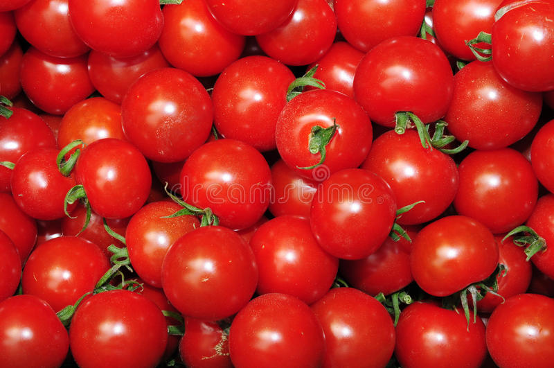Sluit omhoog van vele verse rode tomaten royalty-vrije stock foto