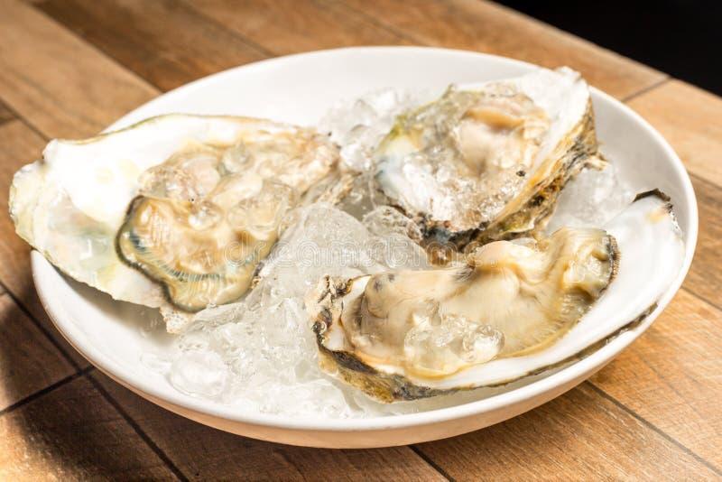 Sluit omhoog van Verse geopende die oester als hoogste mening over verpletterd ijs in witte schotel op houten lijst wordt aangebo stock afbeeldingen