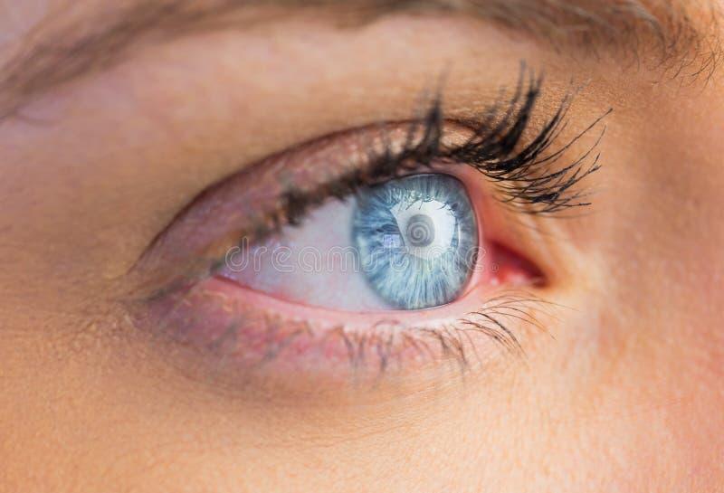 Sluit omhoog van vrouwelijk blauw oog stock fotografie