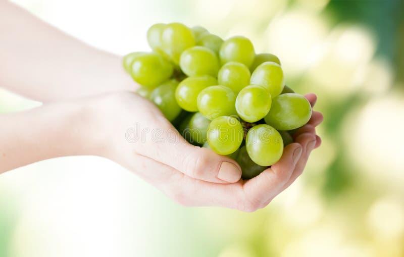 Sluit omhoog van vrouwenhanden houdend groene druivenbos stock foto's