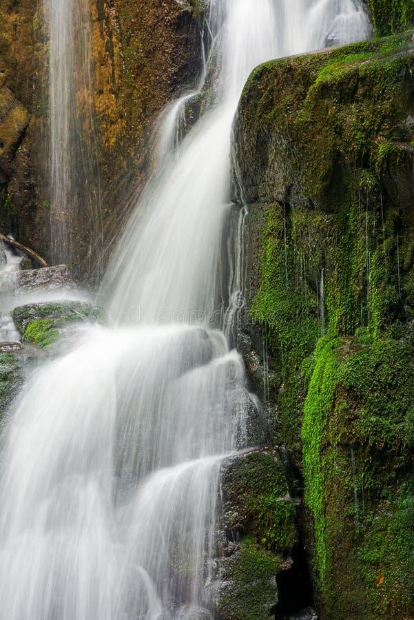 Sluit omhoog van watervalcascade over de bemoste rots stock foto's