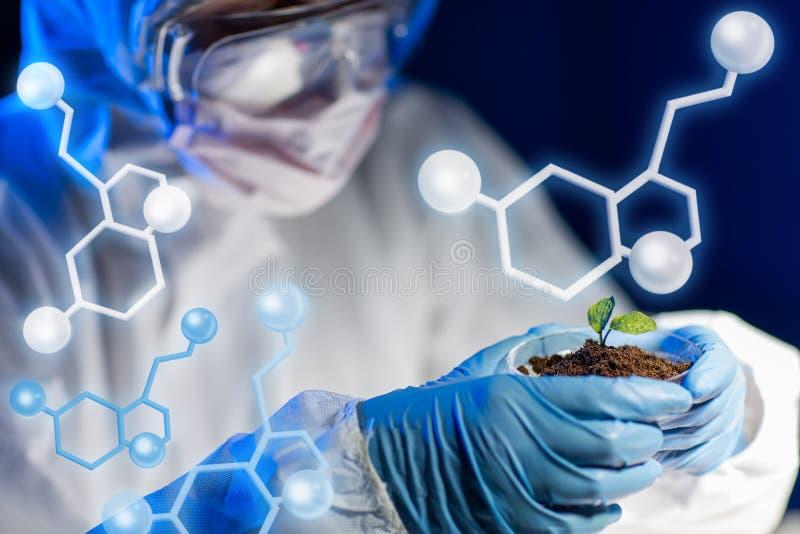 Sluit omhoog van wetenschapper met installatie en grond in laboratorium royalty-vrije illustratie