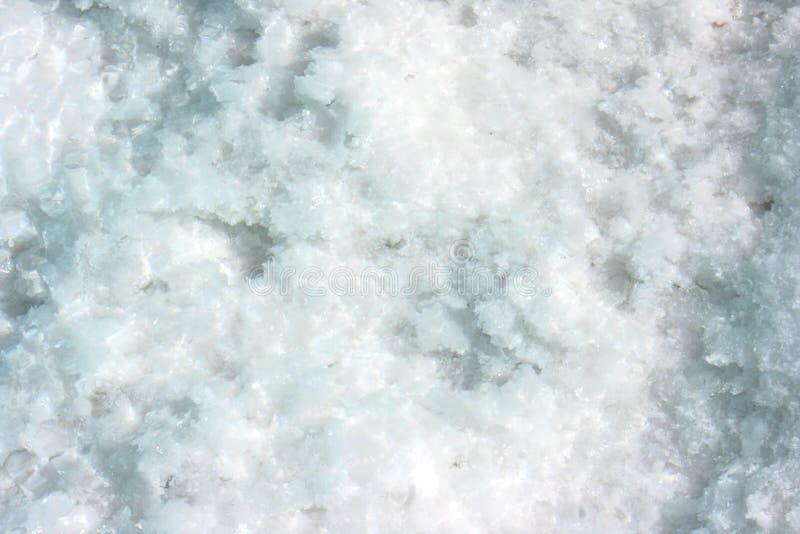 Sluit omhoog van zout op een zout gebied stock foto's