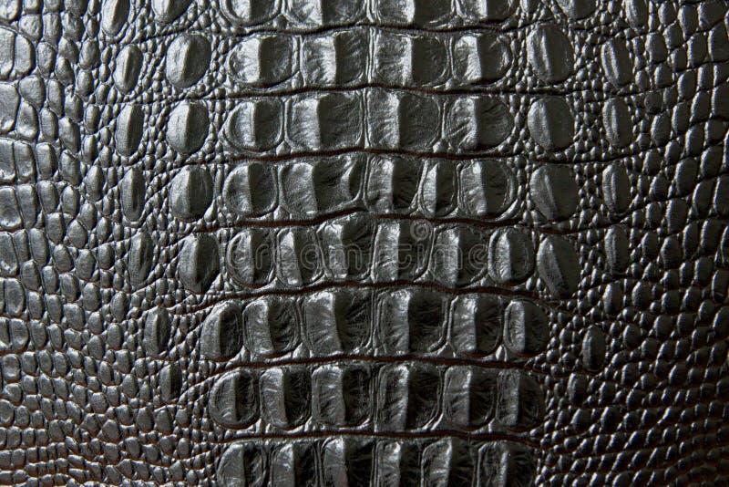 Sluit omhoog van zwarte slang of krokodilhuidtextuur grote schalen stock foto's
