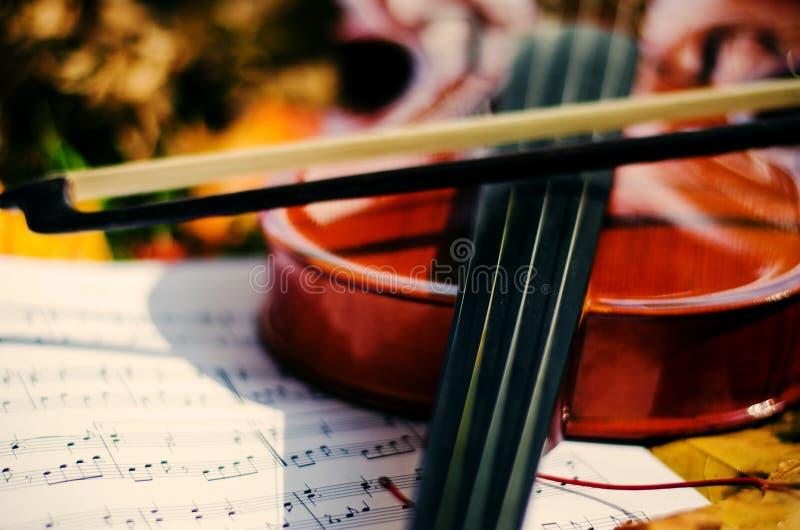 Sluit omhoog viool en nota's over grond met gele de herfstbladeren royalty-vrije stock fotografie