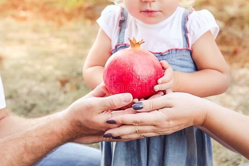 Sluit omhoog weinig babymeisje en haar ouders die granaatappelfruit in zonsondergangtuin houden Gelukkig Familie en vruchtbaarhei stock afbeelding