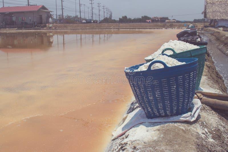 Sluit omhoog wit zout in plastic mand voor de plaats van de waterverdamping op rand van zout meer bij platteland stock afbeeldingen