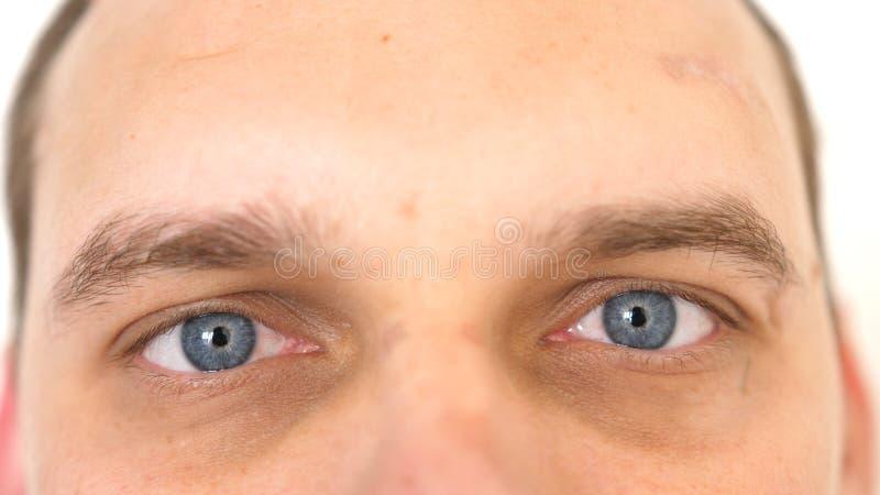 Sluit van omhoog mannelijke ogen Detail van blauwe ogen van een mens die camera bekijken stock foto