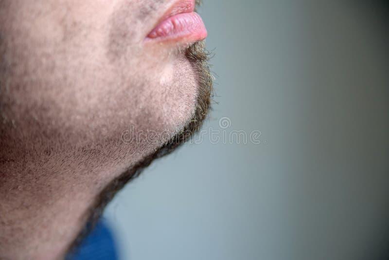 Sluit zijaanzicht half geschoren omhoog baard stock foto