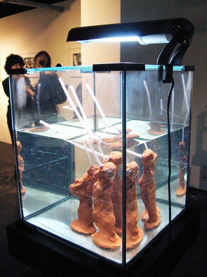 Sluizen. Cambio de polos. fotografía de archivo libre de regalías