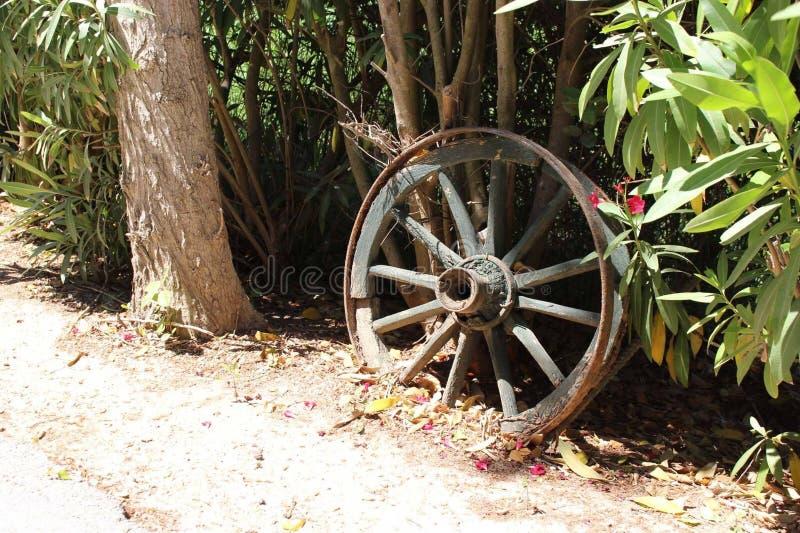 Slumpmässigt hjul arkivfoton