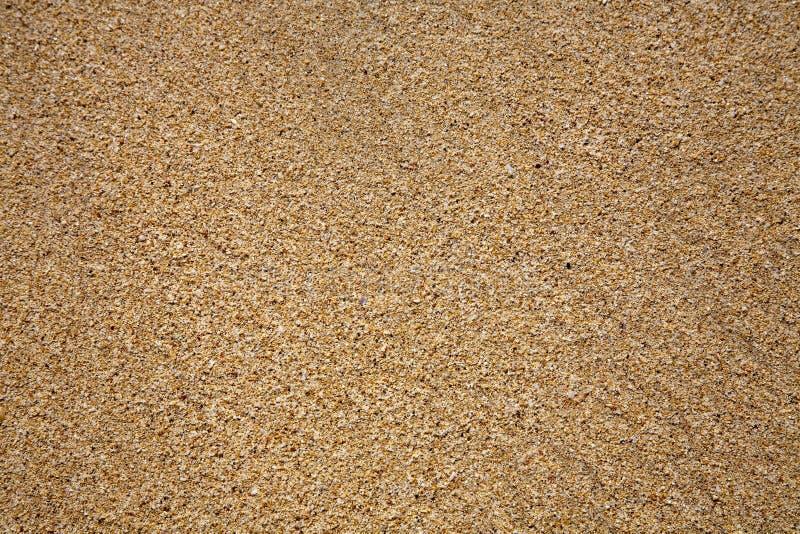 Slut för sandstrandtextur upp arkivbild