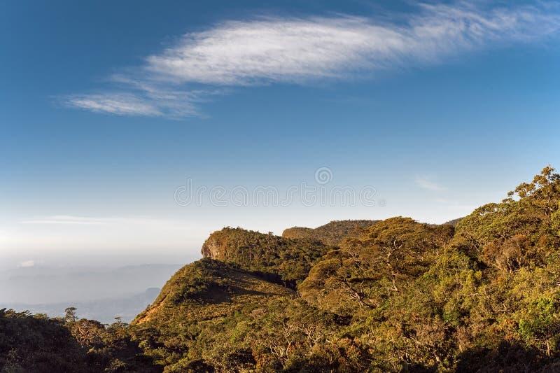 Slut för världs` s, Horton Plains National Park i Sri Lanka royaltyfri foto