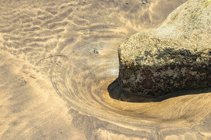 Slut f?r selektiv fokus upp Ny skoavtryck på den våta naturliga strandsanden bredvid en sten som täckas med alger och att ligga i royaltyfria bilder