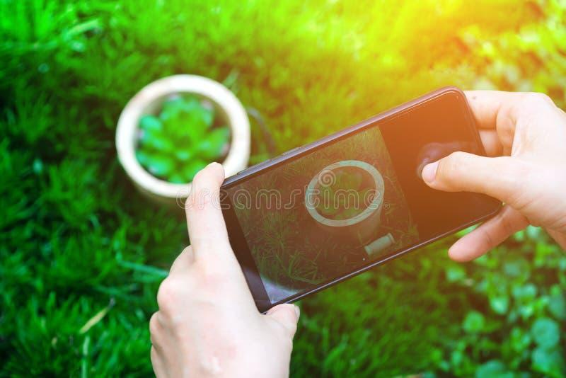 Slut upp asiatisk applikation för kamera för kvinnahandbruk i smartphonen som tar ett foto av den nya gröna kaktuns med en förtit royaltyfri bild
