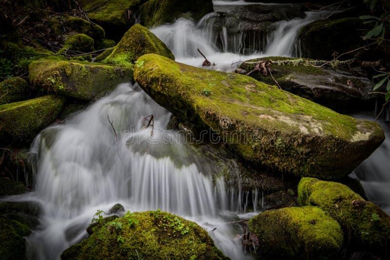 Slut upp av att rusa vatten runt om mossiga stenblock royaltyfri fotografi