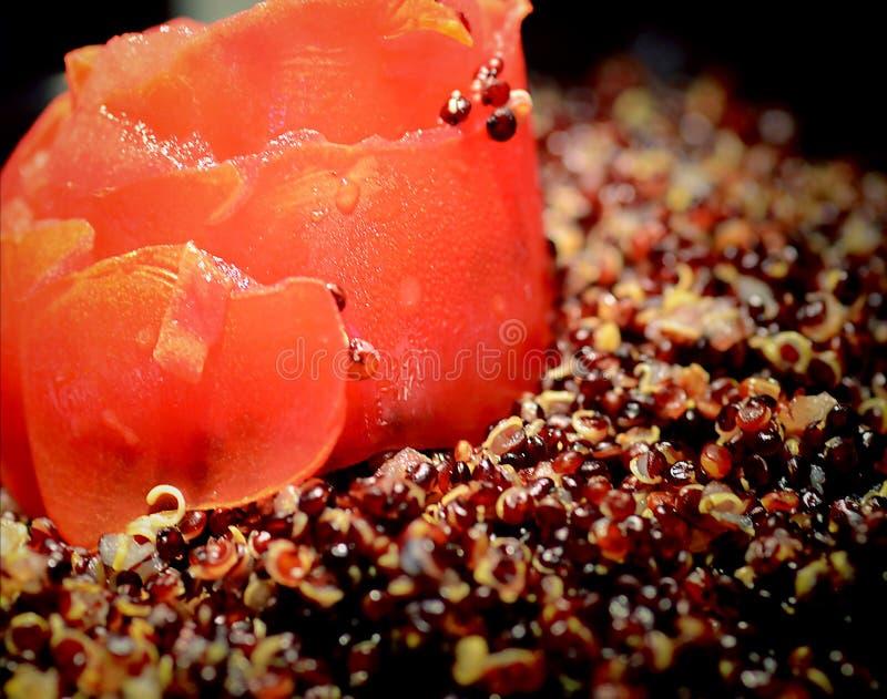 Slut upp av couscous med tomaten royaltyfria bilder