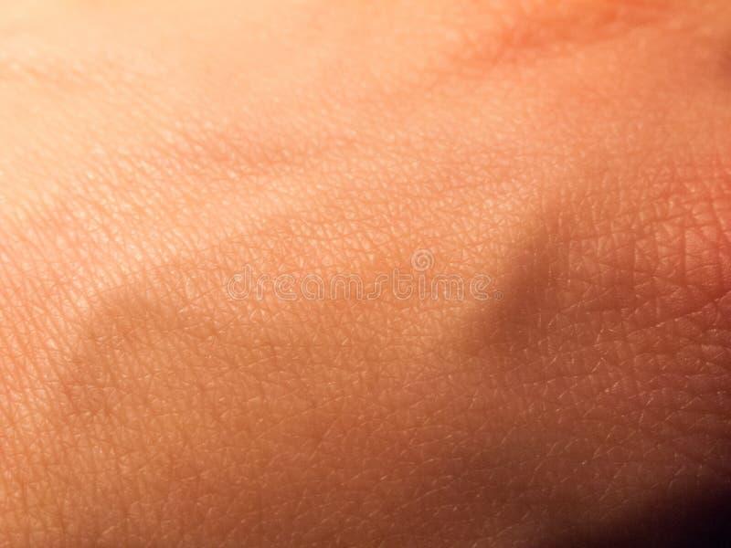 slut upp av den bleka vita hudtexturhanden royaltyfri foto