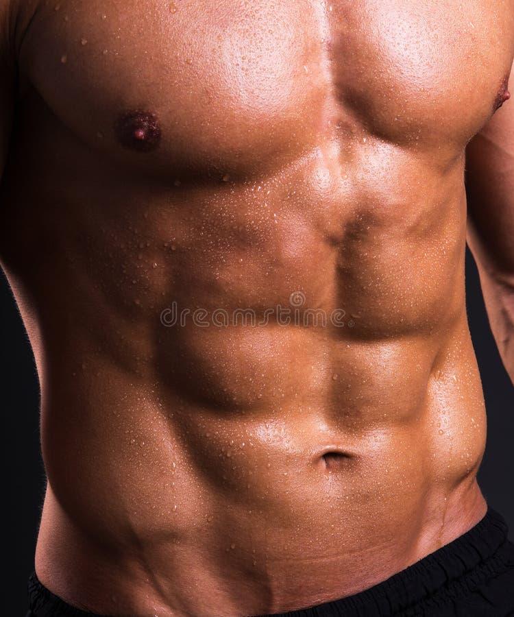Slut upp av den muskulösa manliga torson arkivbilder