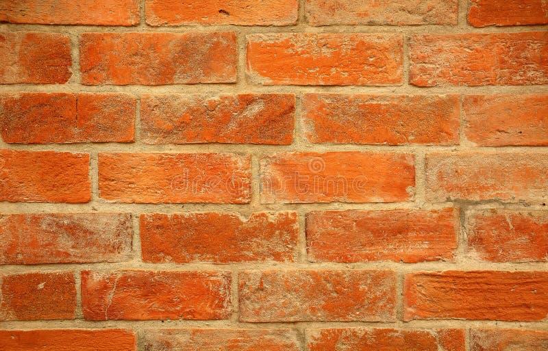 Slut upp av den orange tegelstenväggen royaltyfri foto