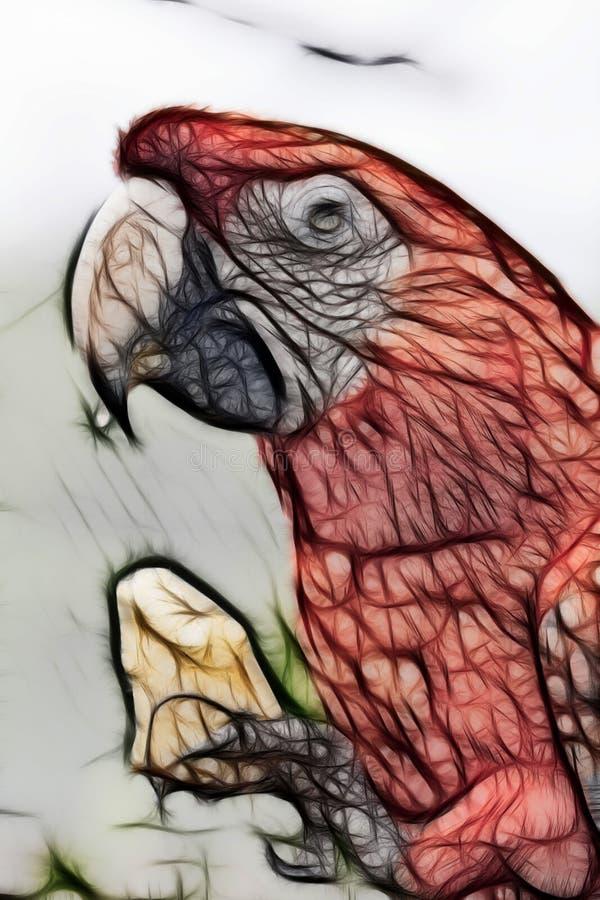 Slut upp av den scharlakansröda arapapegojan, illustration royaltyfri fotografi