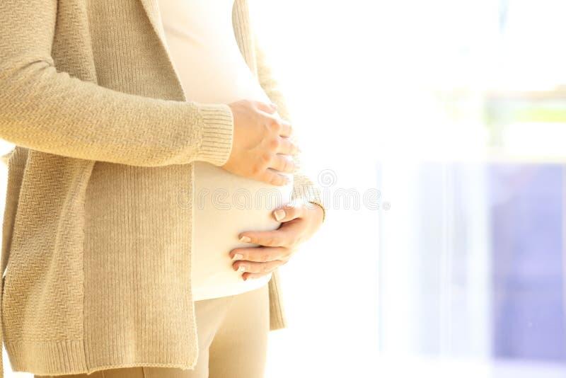 Slut upp av en gravid kvinnainnehavbuk royaltyfri fotografi